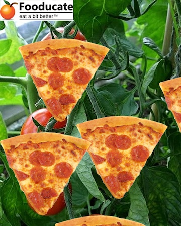 Congress Invents New Vegetable: The Pizza
