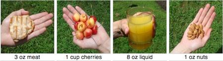 Visualizing Portion Sizes
