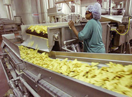A Visit to the Frito Lay Potato Chip Manufacturing Facility