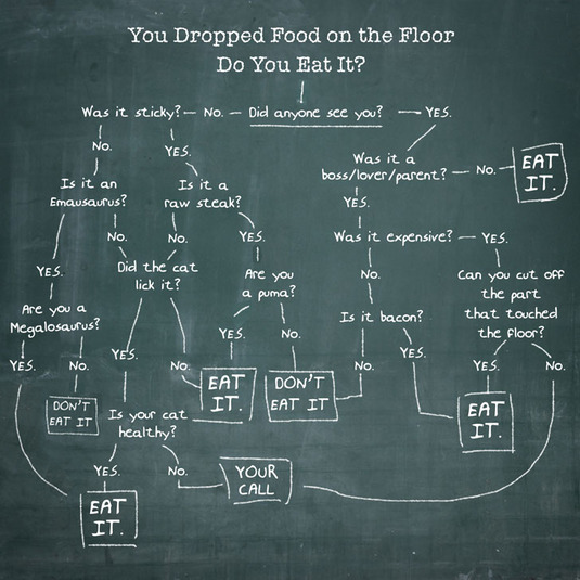 You Dropped Food on the Floor. Do You Eat It? [funny]