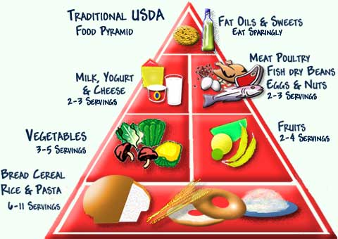 """USDA: Changing the Food Pyramid into a """"Food Plate"""""""