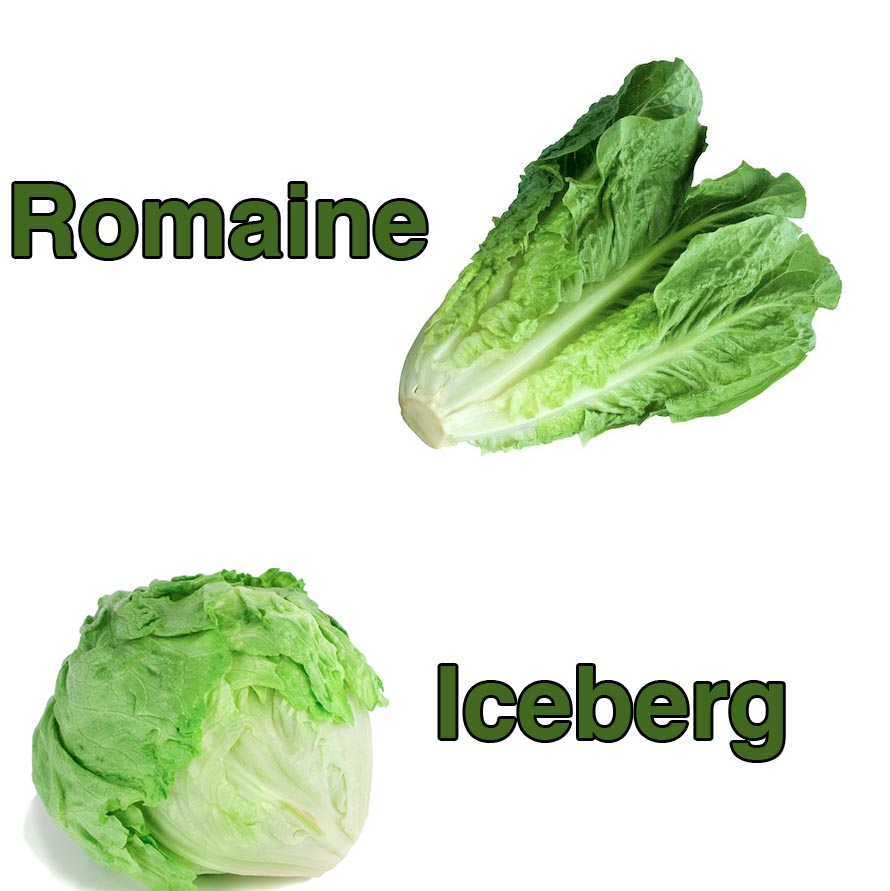 Does Lettuce Have Any Nutrition Or Does It Just Fill Me Up