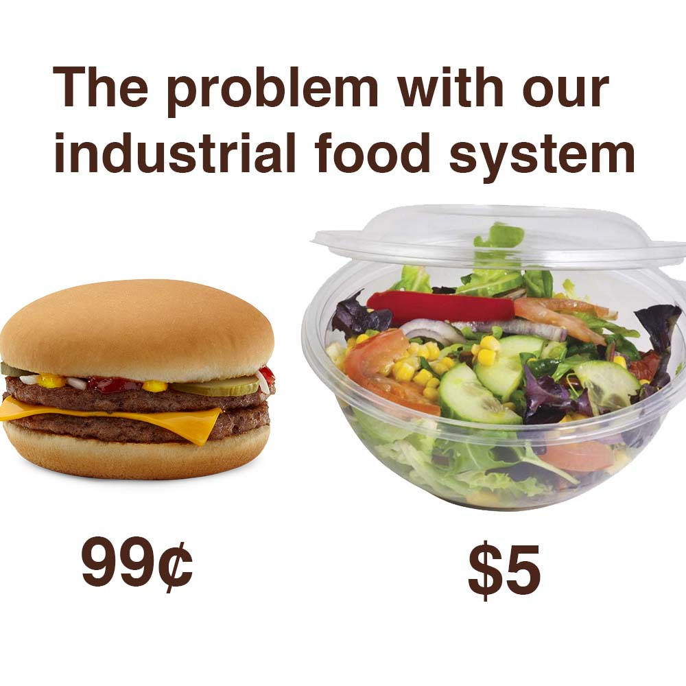 Fast Food Industry And Obesity