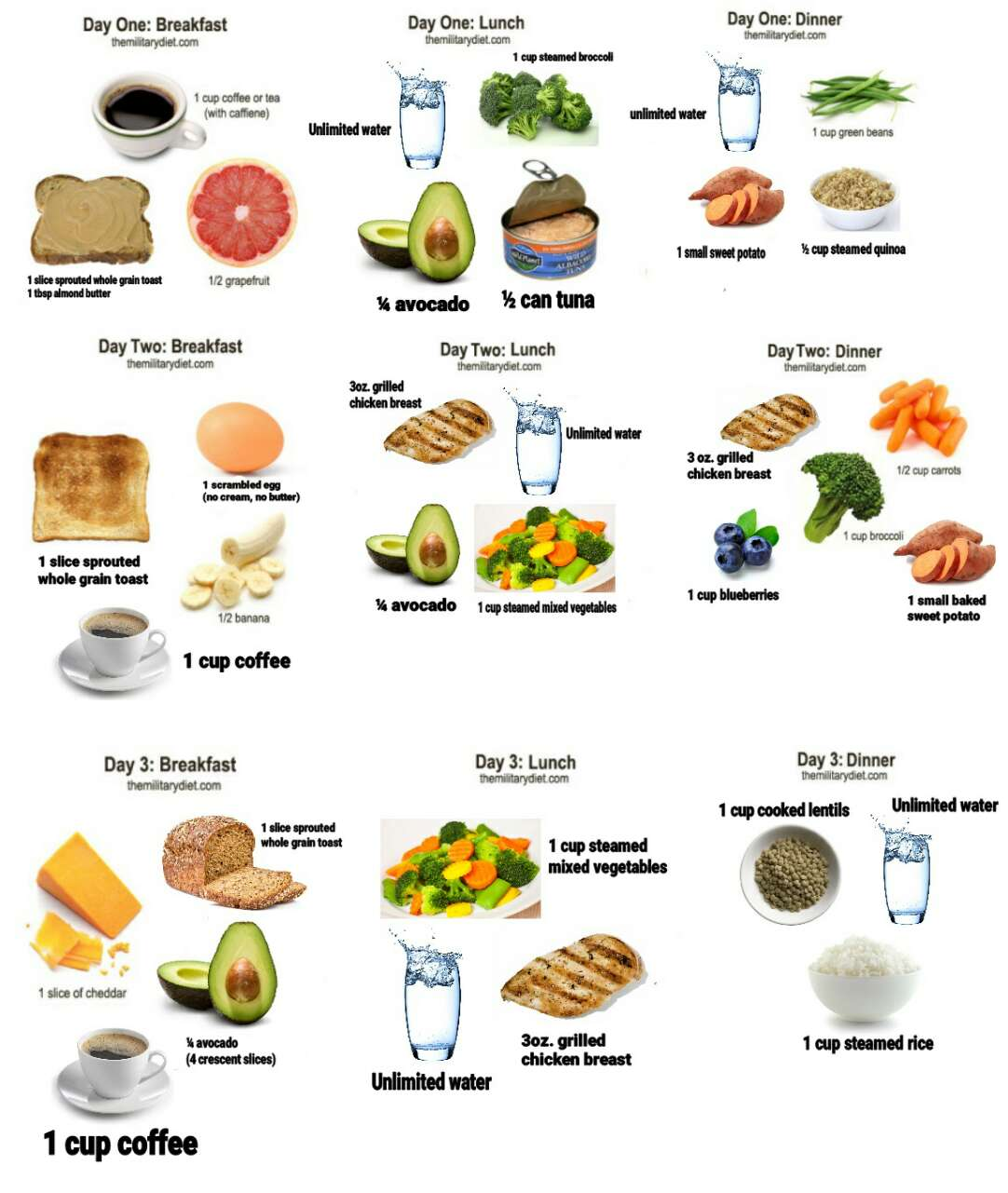 It's just an image of Impeccable Printable Military Diet