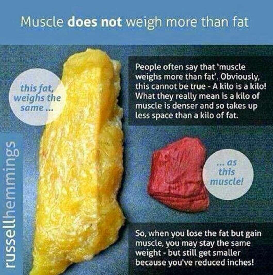 Diet plan for bodybuilding pdf picture 3