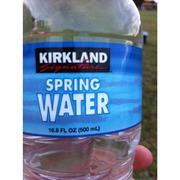 Kirkland Signature Spring Water