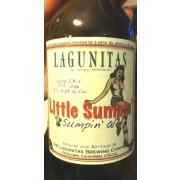 Lagunitas Little Sumpin', Ale Beer
